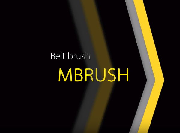 Belt brush