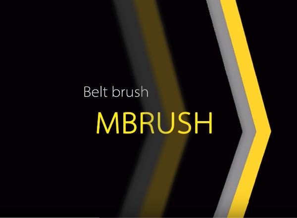 Belt brush